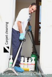 Steam Carpet Cleaning Company Chelsea 3196