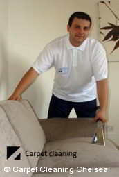 Upholstery Cleaning Chelsea 3196