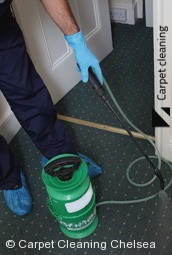Chelsea Steam Carpet Cleaners 3196