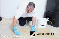 Carpet Dry Cleaning Company Chelsea 3196