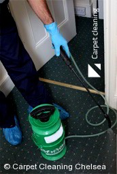 Chelsea 3196 Deep Carpet Cleaning Services
