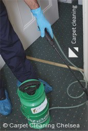 Professional Carpet Cleaners Chelsea 3196