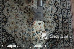 Chelsea 3196 Rug Cleaning Services